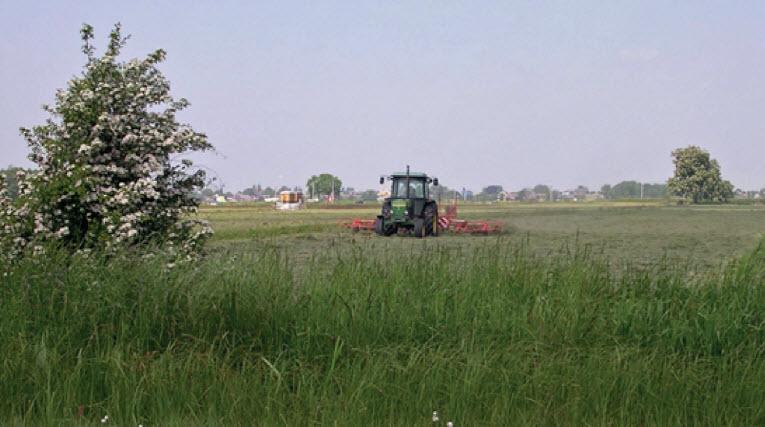 Agrarisch natuurbeheer kàn bijdragen aan natuurwaarden