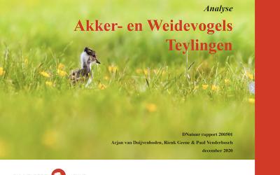 DNatuur publiceert rapport over weide- en akkervogels in gemeente Teylingen